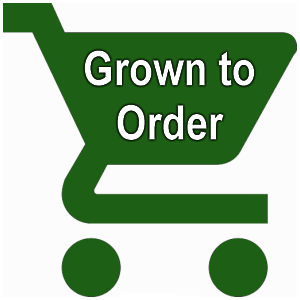 Grown to order